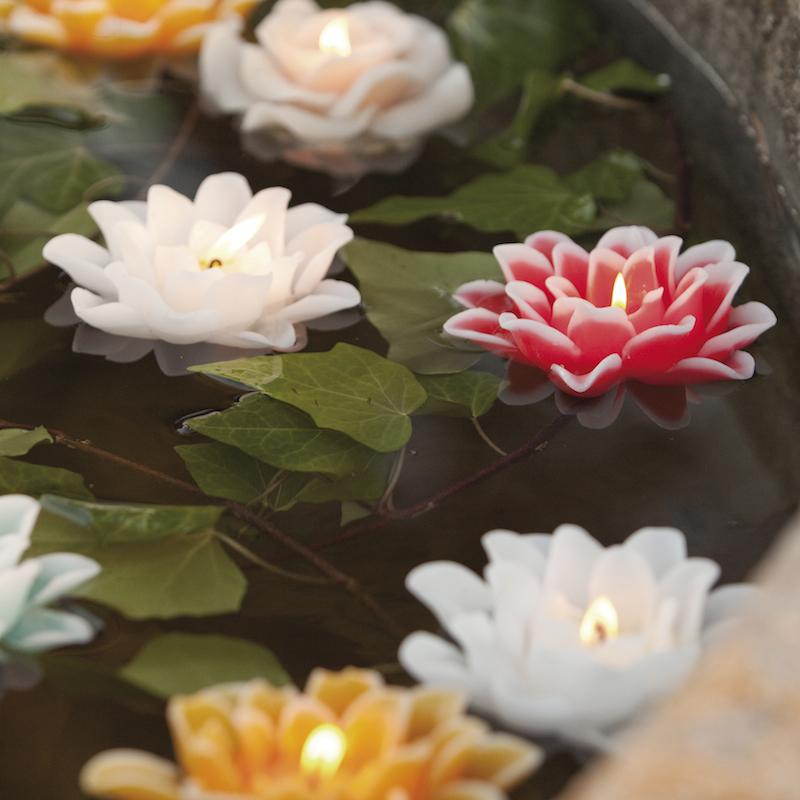 Velas en forma de flor velas en forma de flor lirio de agua rojo decoragloba - Velas de agua ...